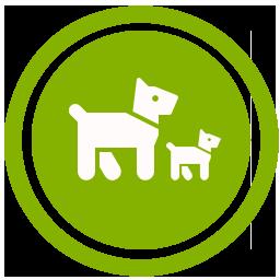 Calendario Della Gravidanza Calcolo.Calcolo Gravidanza Cani Quanto Dura La Gestazione Di Cani